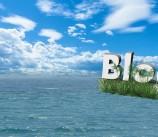 Diferencias entre Web y Blog